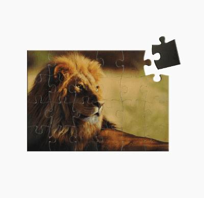 Badge4u – Flexi puzzle